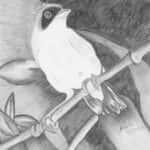 Angela Maria da Silva Agostini Fig 2 150x150 - Desenhos dos Alunos da Oficina de Desenho Artístico 2002 a 2017