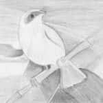 Elza Maria Mendes 63 anos 150x150 - Desenhos dos Alunos da Oficina de Desenho Artístico 2002 a 2017