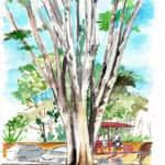 Encontro de Pintura ao Ar Livre 6 150x150 - 16° Encontro Mundial de Pintura ao Ar Livre - 7 de setembro de 2018 em Tiradentes
