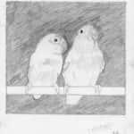 Evandro 150x150 - Desenhos dos Alunos da Oficina de Desenho Artístico 2002 a 2017