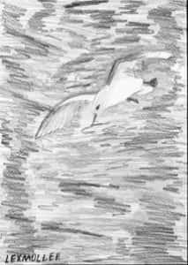 Lexmuller C. da Silva 213x300 - Desenhos dos Alunos da Oficina de Desenho Artístico 2002 a 2017