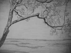 Rosangela Martins de Oliveira Silva Fig 5 300x225 - Desenhos dos Alunos da Oficina de Desenho Artístico 2002 a 2017