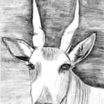 Wiliam Delgado Moreira 150x150 - Desenhos dos Alunos da Oficina de Desenho Artístico 2002 a 2017
