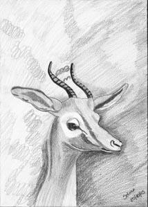 hpselma - Desenhos dos Alunos da Oficina de Desenho Artístico 2002 a 2017